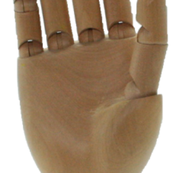 Articulated wooden hands