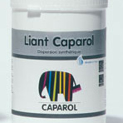 Caparol binding medium